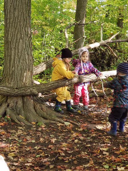 Forest School Outdoor Activity